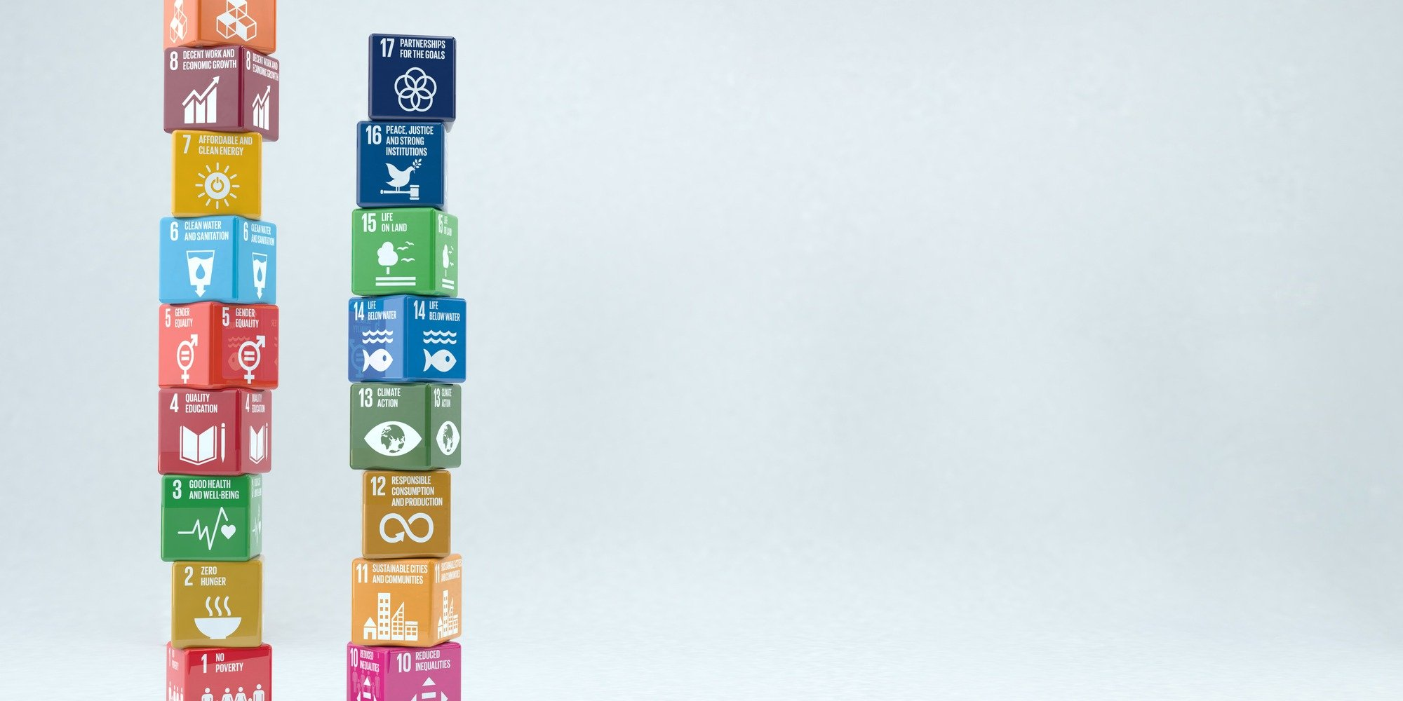 5 Priority UN Sustainable Development Goals for Company Action in 2021